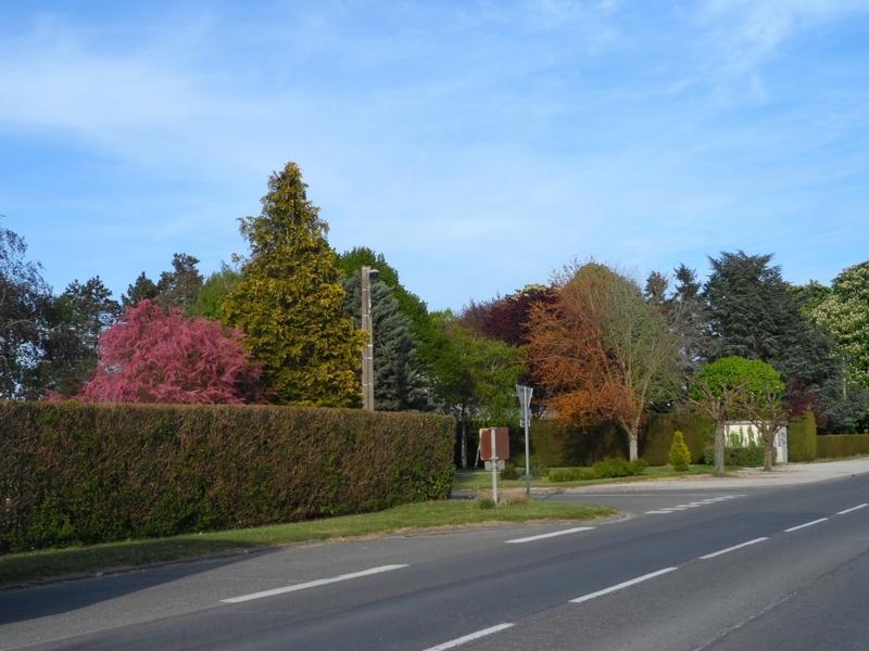 SaintPéravylaColombe3_Le Bourg_espace vert